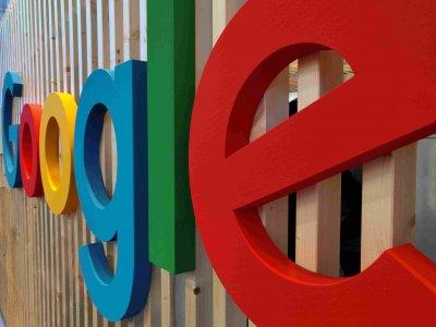 Google Kompleksleri